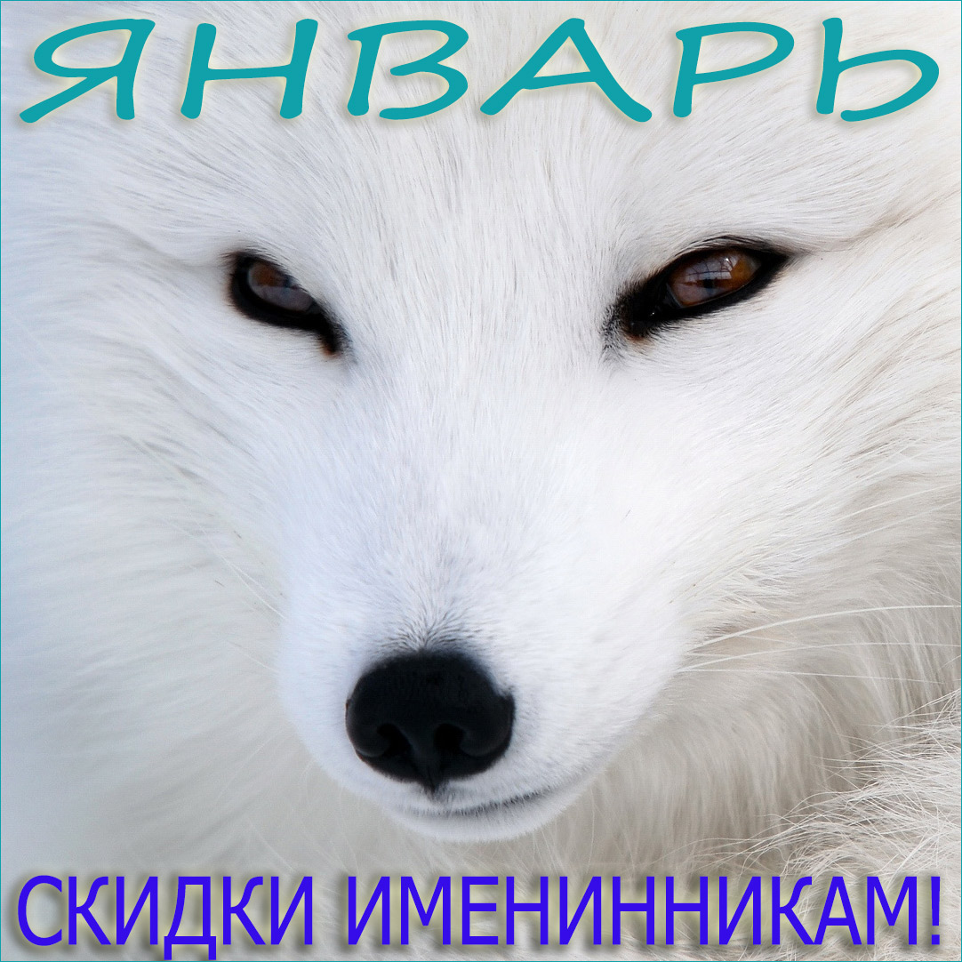 ДР_январь