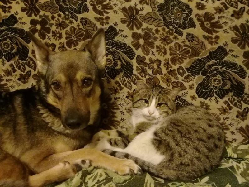 Семейное фото. Стася и Сёма