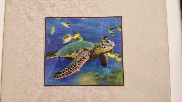 sea turtle embroidery