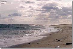Beach 2004