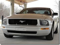 Mustang 43 012