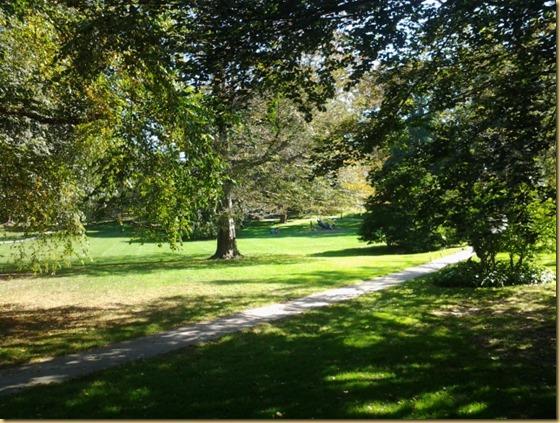 Wilcox Park 4