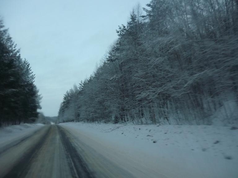 Зимняя дорога в Суздаль