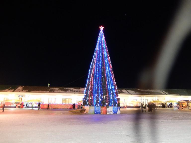 Новогодние елки в Суздале