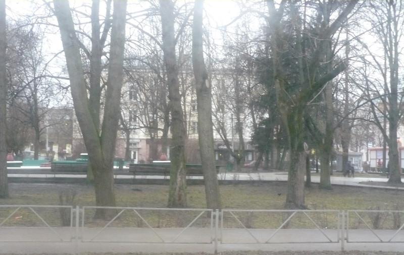 Вид на город из окна автобуса