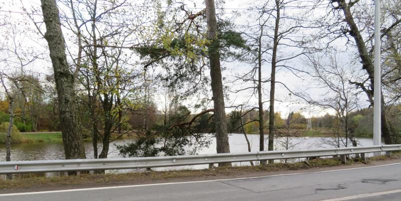 Красный (верхний) пруд, находящийся за пределами паркового ансамбля, питает его гидросистему.