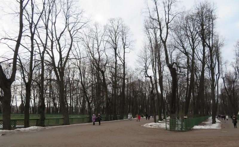 Ранней весной Главная и Хозяйственная аллеи  парка со стороны Карпиевого пруда уже сухие и ещё практически безлюдные