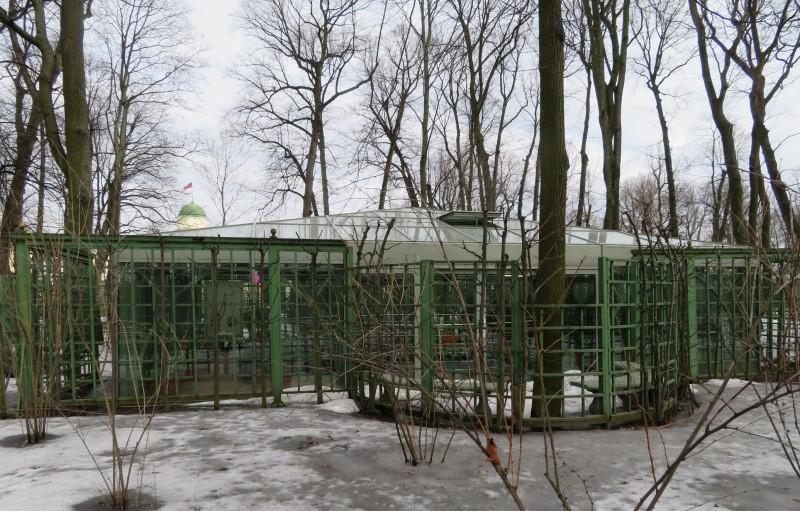 """Боскет """"Зеленые кабинеты"""" в летние месяцы скрыт за густой листвой"""