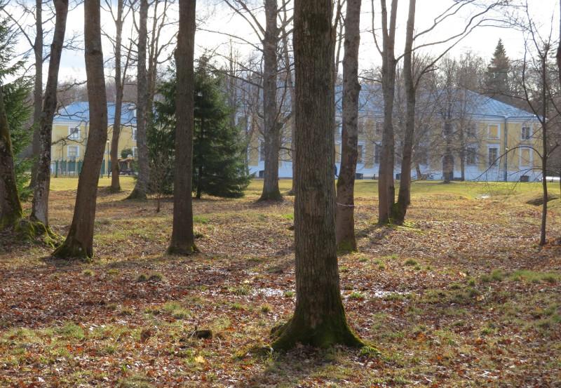 Вид из леса на Кавалерский корпус (по центру) и Зверинец (зеленая ограда просматривается слева)