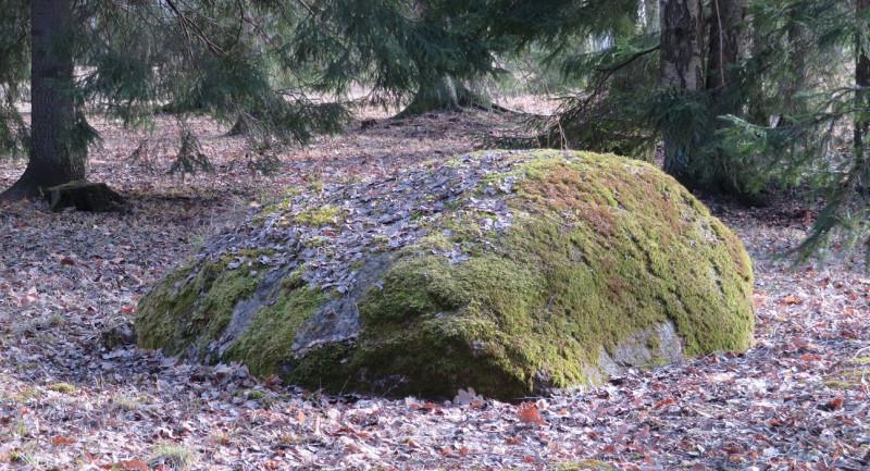 Огромные валуны встречаются во многих уголках парка