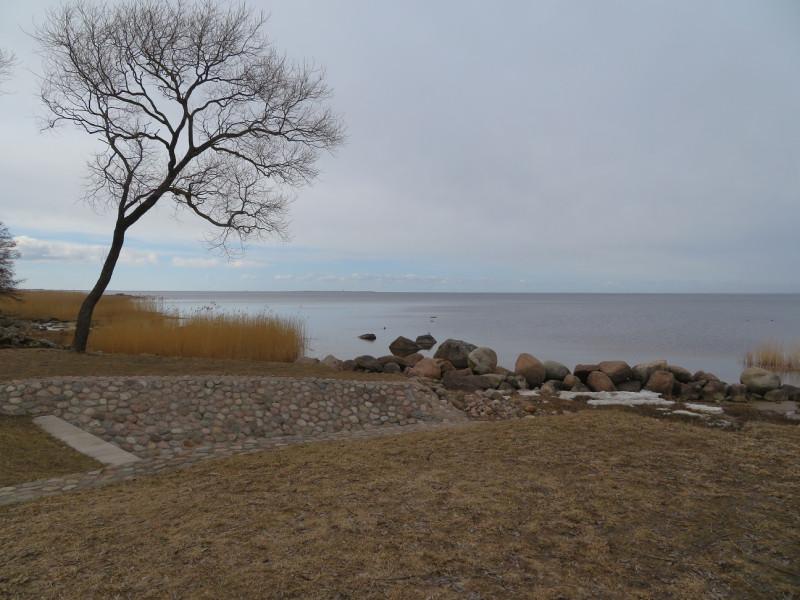 Вид на запад и Финский залив из Александрии