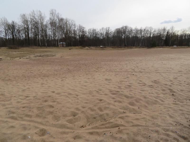 Здесь был хорошо благоустроенный Городской пляж Петродворца с раздевалкой, летним кафе и туалетами.  В лихие 90-ые на пляже был устроен песчаный карьер.