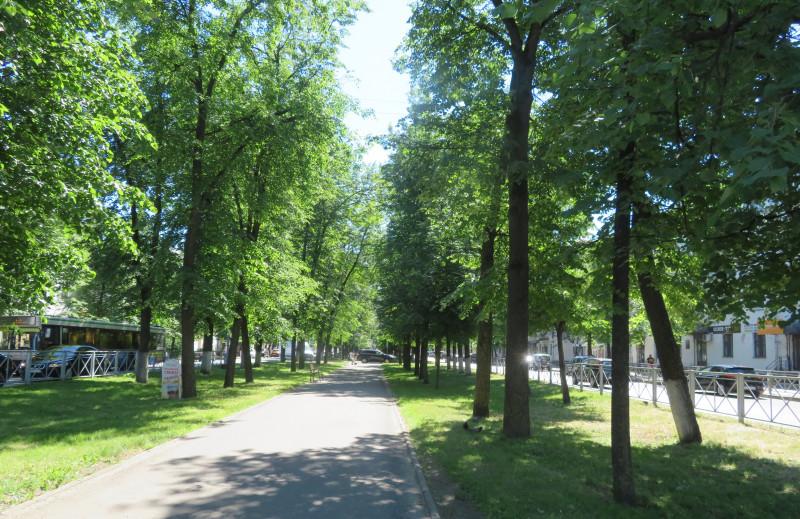 Тенистый Воскресенский бульвар ведет к пл. Карла Маркса. Далее улица Людогоща выходит на пл. Победы-Софийскую и Кремлевский парк.