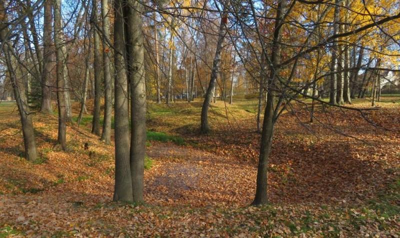 Холмики — это всё, что осталось от земляных укреплений крепости Петерштадт.