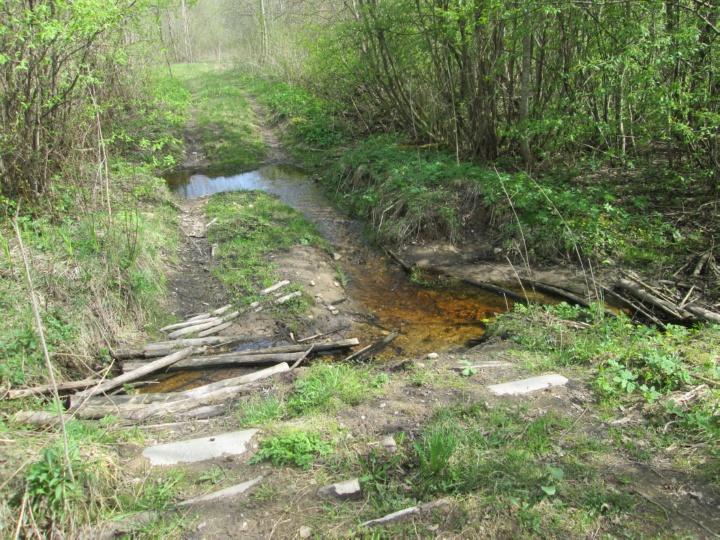 По некоторым лесным дорогам можно проехать на вездеходе, если их слегка подремонтировать