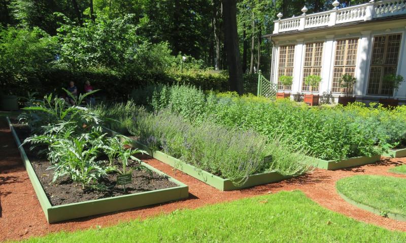 Справа вход на огород и фрагмент Оранжереи
