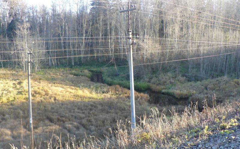 Речка Черная, вид с правого берега с высоты железнодорожной насыпи.