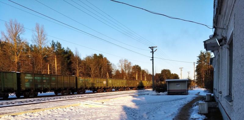 Железнодорожные пути и платформа станции Опухлики