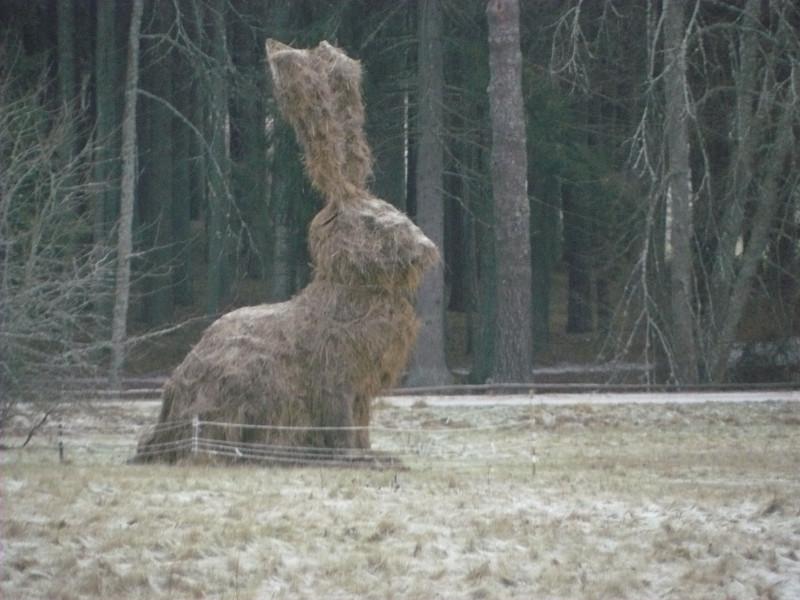 Стог сена в виде зайца. Памятник зверьку, перебежавшему дорогу А.С.Пушкину, что помешало ему убежать из ссылки и присоединиться к декабристам