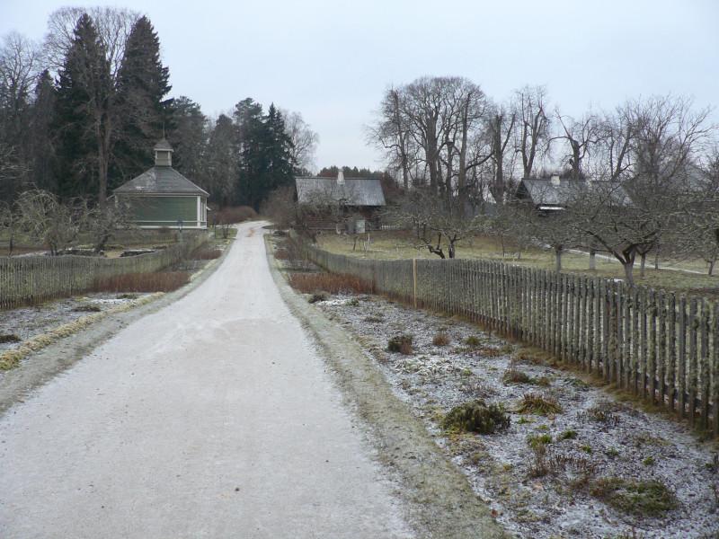 Дорога к усадьбе. Слева от дороги - сад и здание Колонии для престарелых литераторов (1911 год), справа- контора и дом управляющего усадьбой
