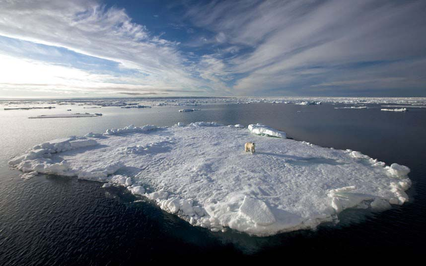 From-Africa-to-the-Arctic-6