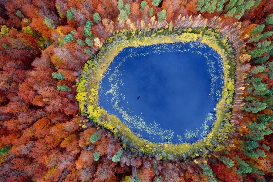 Aerial Photo of Kashubia Lake, Poland