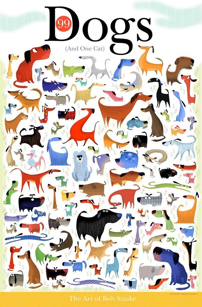 картинки найди котика