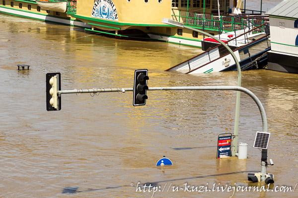 Наводнение в дрездене 2013 максимум