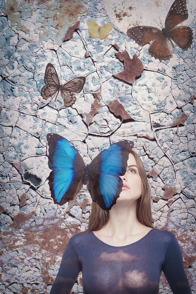 бабочки-3.jpg