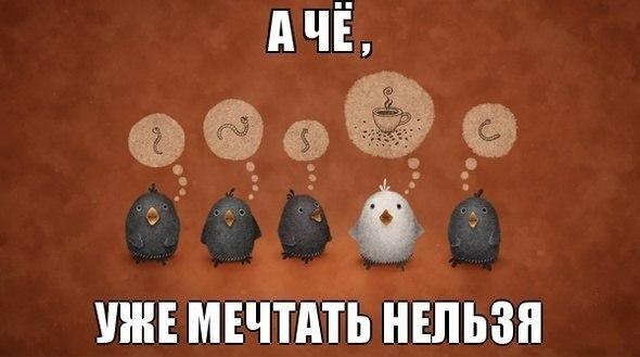 -o14SdXxbhA