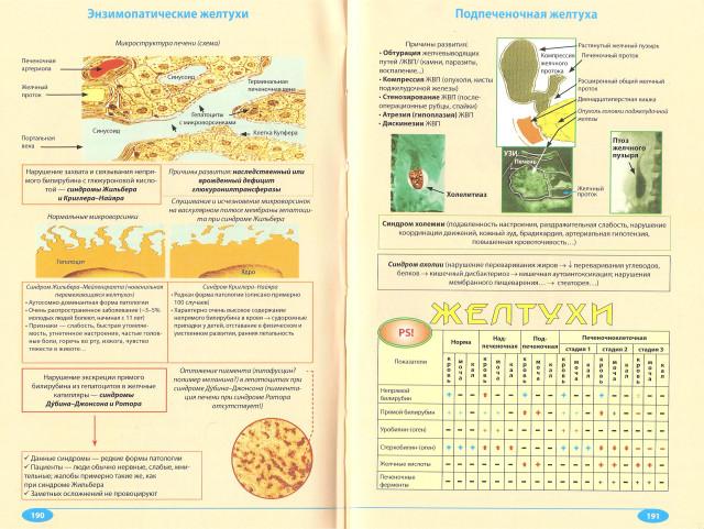 pdf mcgraw hills super mini american idioms