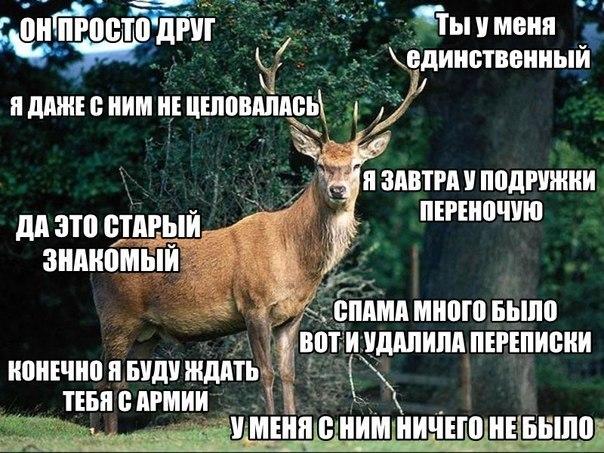 konchaet-bolshe-chem-muzhik