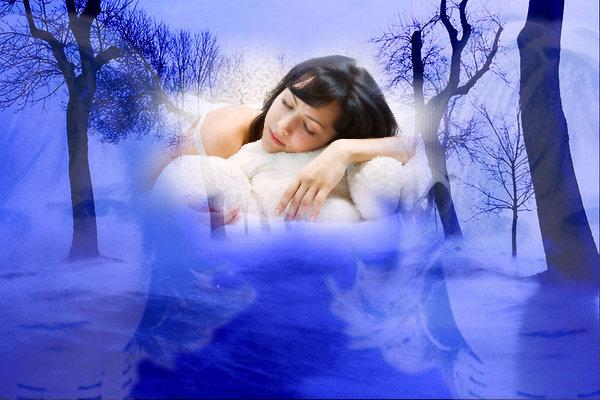 сновидящий