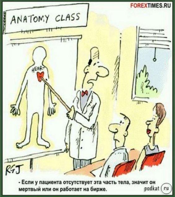класс анатомии форекс юмор