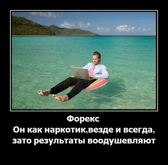 форекс юмор на море