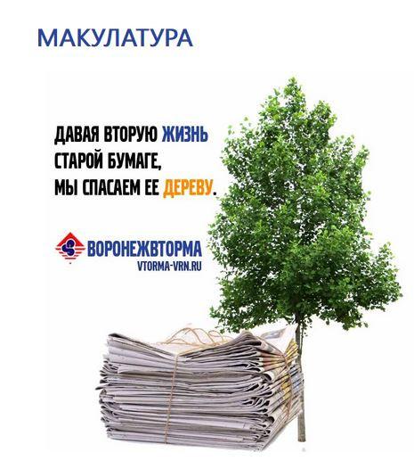сколько собранной макулатуры спасает дерево
