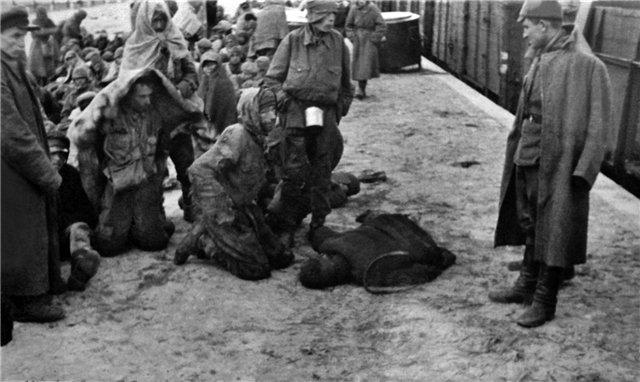 Шталаг 307 Демблин прибытие пленных и лагерный полицай
