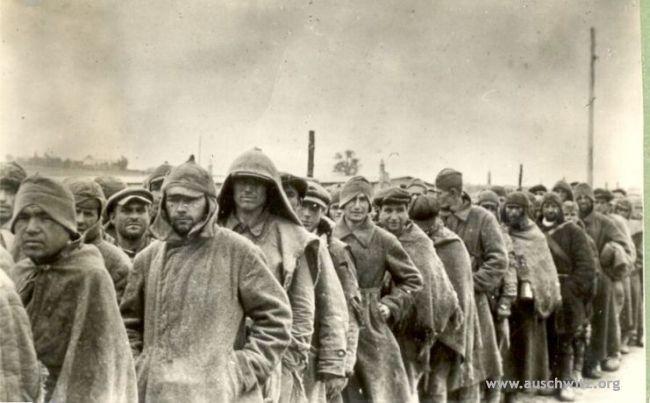 Освенцим - пленные