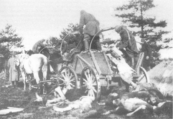Шталаг ХД (Витцендорф, военный округ Гамбург), осень 1941 г. Трупы военнопленных- вывоз