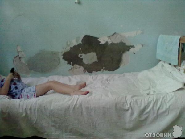 Дет. инф. Отд. №1 детской гор. больницы (Шахты) .2012 1