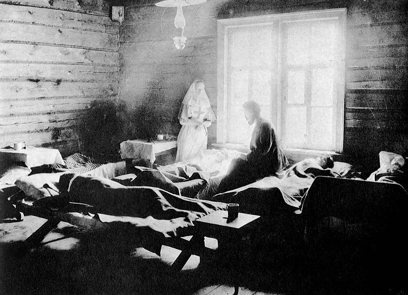 Тифозная больница в селе Новая Слобода Лукояновского уезда  Нижегород. 1890-91 гг