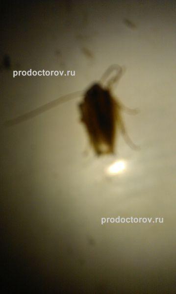 Хабаровск Горбольница №10 Гинекол. отд. 2013 2