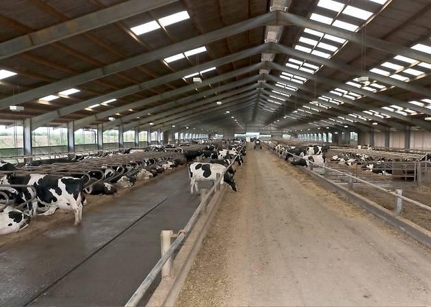 Англия ферма