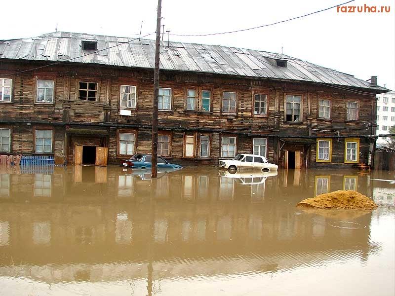 Ураган в Ужгороде повалил деревья и повредил автомобили - Цензор.НЕТ 9911
