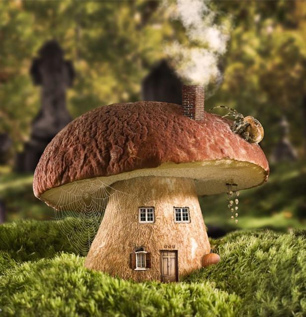 Сбор грибов все грибники здесь