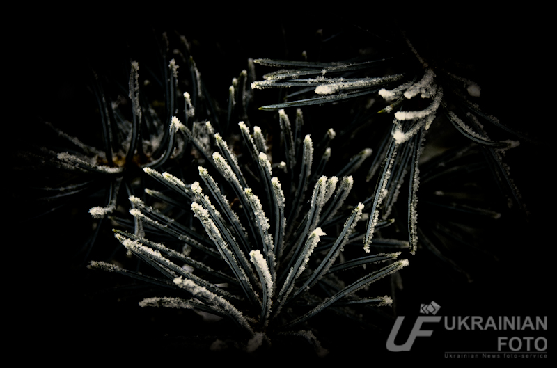 http://pics.livejournal.com/ukrafoto/pic/0009rfs3
