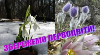 Львів 12 лютого георгій маценко