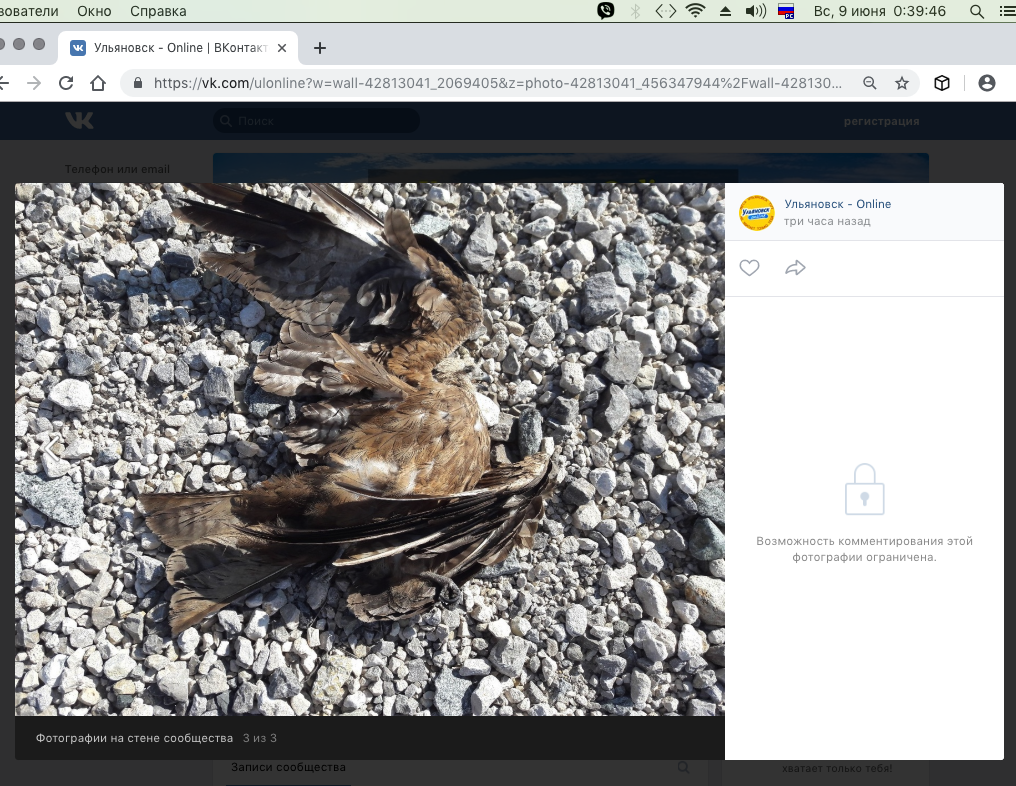 Снимок экрана 2019-06-09 в 0.39.42.png