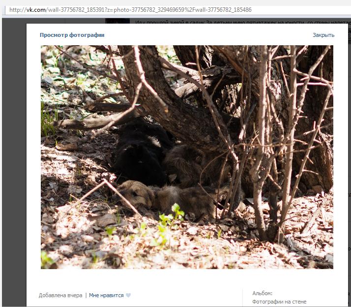 Снимок экрана 2014-04-28 в 10.44.52