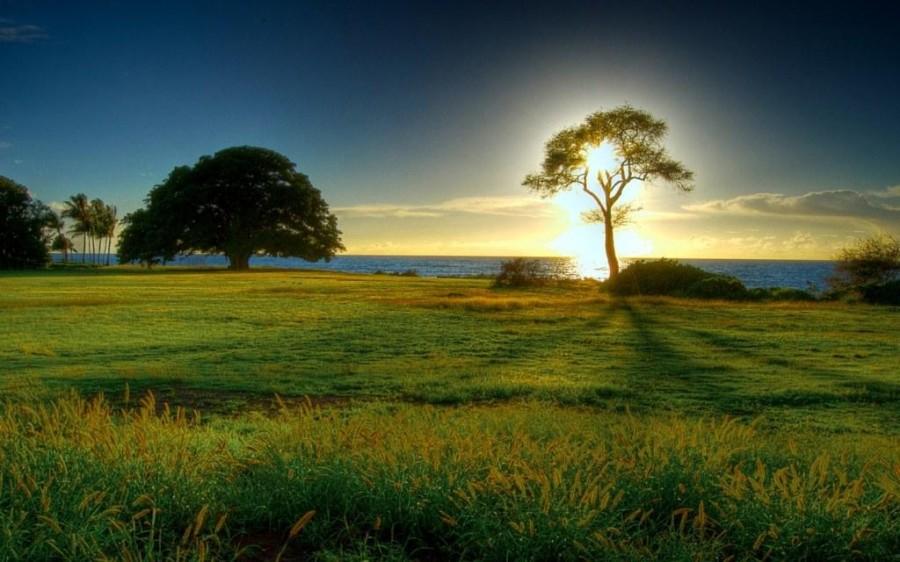 hd_beautiful_nature_landsacpe_200819070223-8865
